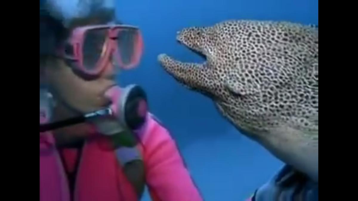 Valerie May Taylor y una anguila moteada
