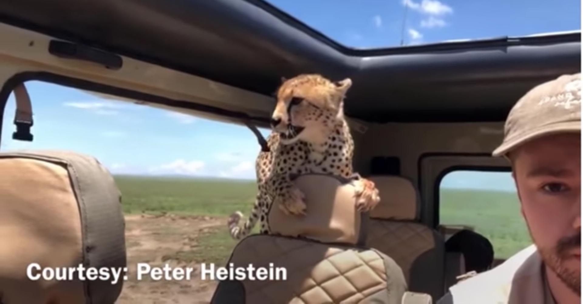 chita-jeep-safari-turistas