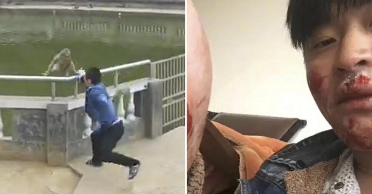 Mono Aventar Vengaría Chistoso Video Venganza