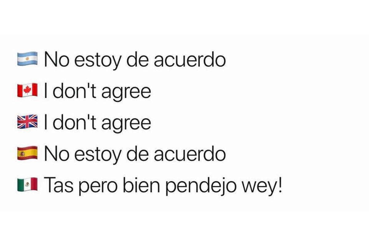 Los-mejores-memes-de-cómo-se-dice-en-México-11