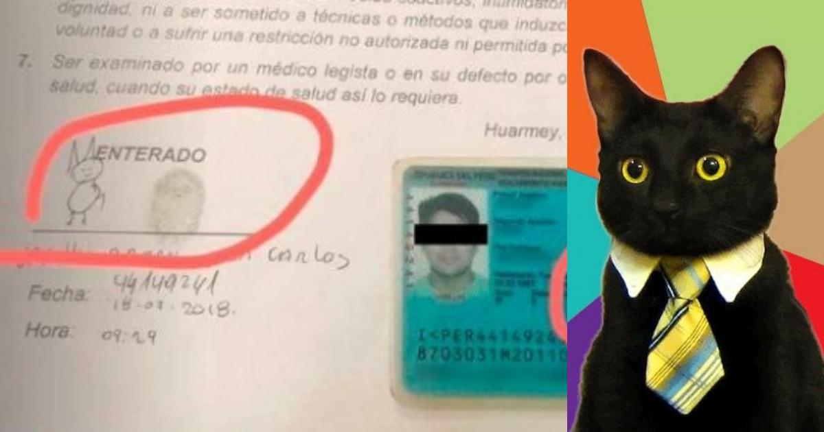 Resultado de imagen para Firma gato