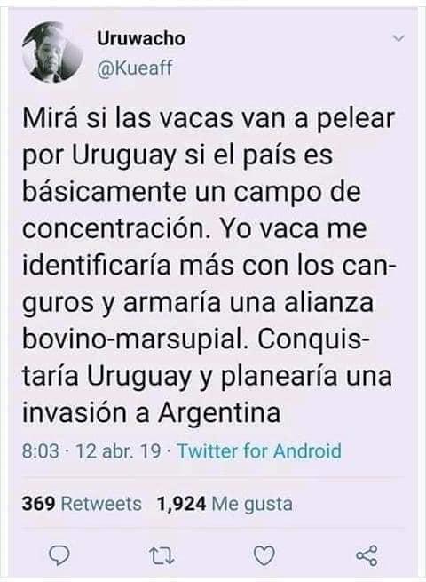Memes de la guerra entre uruguayos y canguros