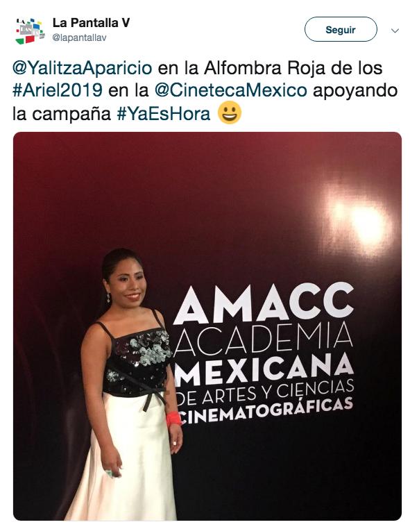 GALERÍA: Lo mejor de la alfombra roja del premio Ariel 2019