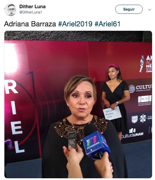 Alfombra roja premios Ariel 2019