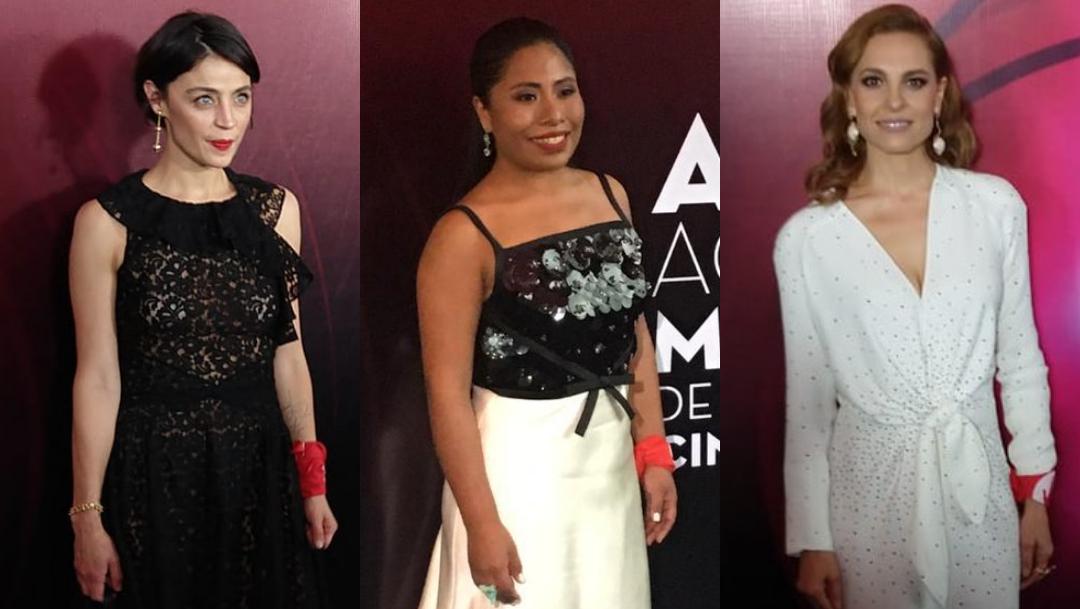 Premio Ariel 2019, Entrega Premios Ariel 2019, Premios Ariel Cineteca, Alfombra Roja, Alfombra Roja Premio Ariel 2019, Ariel 2019 Nominados
