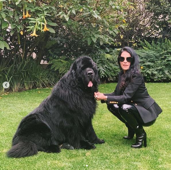 Martha Debayle comparte muerte de su perrito Gastón